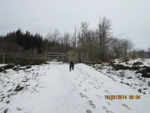 Snowy day 2